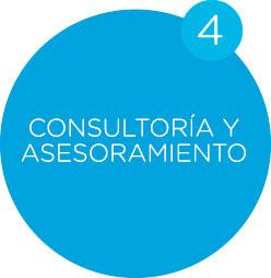 servicios consultoria y asesoramiento celeris
