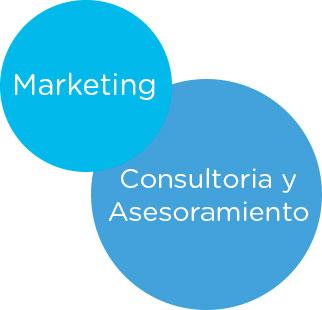 servicio celeris, marketing y consultoria y asesoramiento